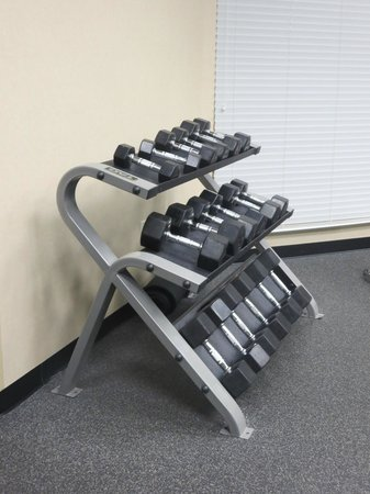 Hampton Inn and Suites Flint / Grand Blanc: Weights in the Workout Room