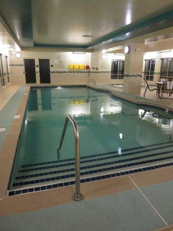 Hampton Inn and Suites Flint / Grand Blanc : Pool