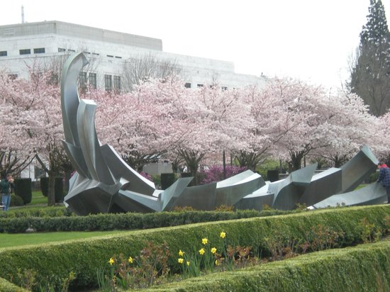 Oregon State Capitol: Fountain and cherry blossoms