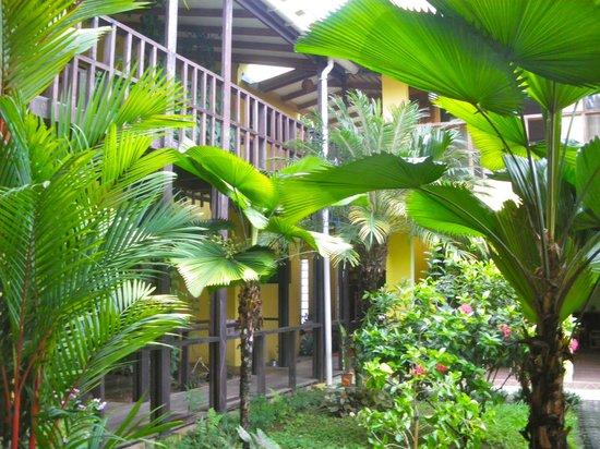 La Casa de las Flores Hotel: Vista del Jardín desde mi habitación.
