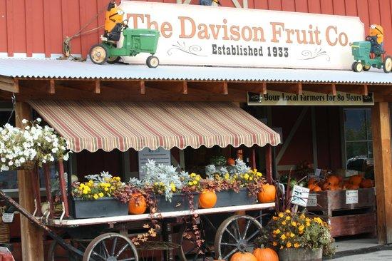 Davison Orchards Country Village: Davison Orchard