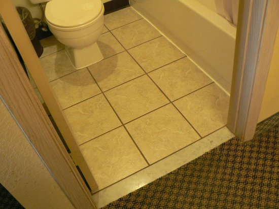 Americas Best Value Inn - Lynnwood / Seattle: new tile, great bathroom besides the sloppy caulking