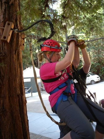 Sonoma Canopy Tours : ready to zip