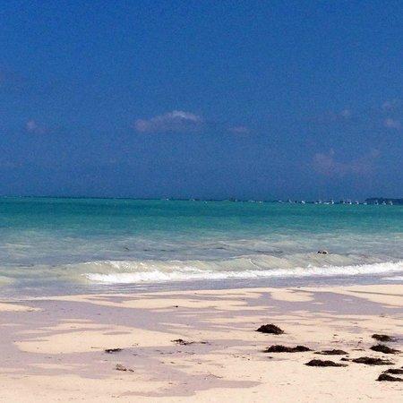Secrets Royal Beach Punta Cana: Secrets Royal Beach