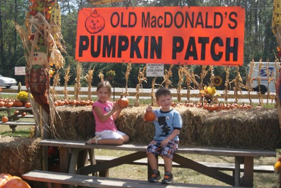 Kids sitting on a bench at Old MacDonald's Pumpkin Patch