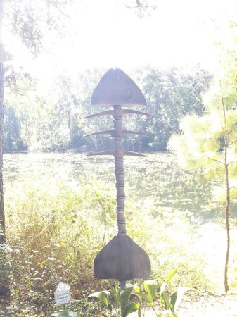 Jacksonville Arboreteum & Gardens: Art  in  Nature     Nov  2013