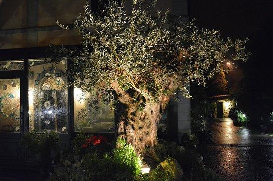 Villa Clodia: L'ingresso