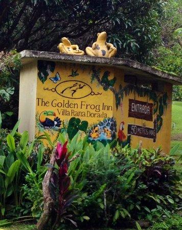 The Golden Frog Inn: Turn Here