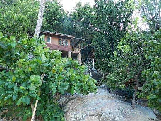 Thong Yang Bungalows: Notre bungalow vu de la plage