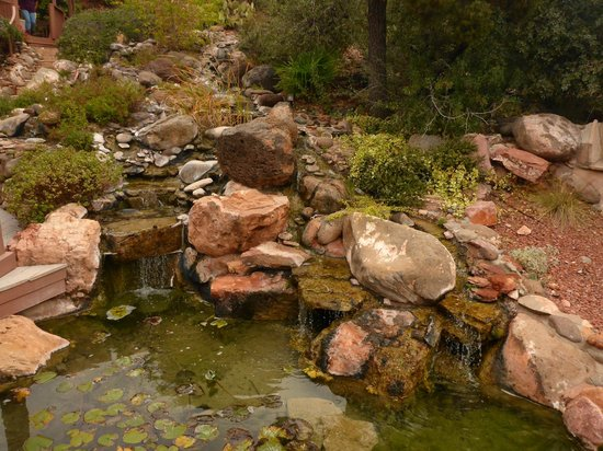 Sedona Views Bed and Breakfast: A view of the pond and waterfall feature