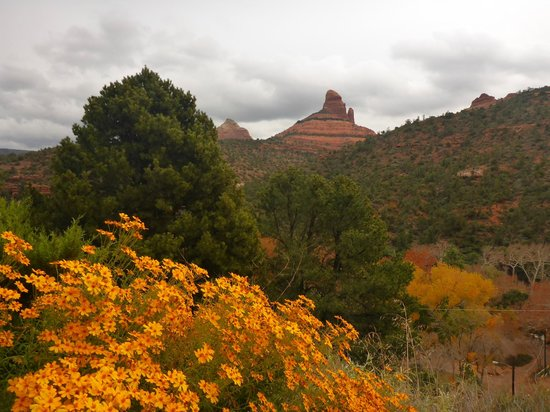 Sedona Views Bed and Breakfast: The garden & view