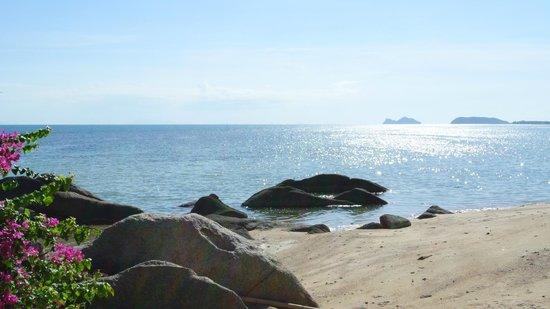 Thong Yang Bungalows: La plage