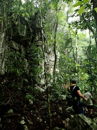 Belize Magnificent Mayan Tours : Hiking throught the jungle to Crystal Cave