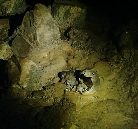 Belize Magnificent Mayan Tours: Skull at Crystal Cave