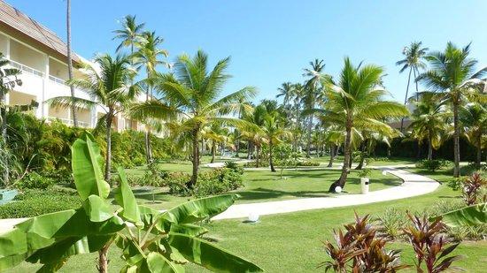 Secrets Royal Beach Punta Cana : Gardens