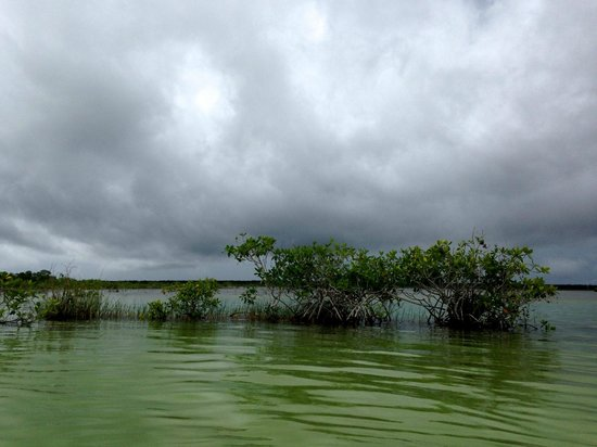 Rancho Encantado: The Bacalar lagoon
