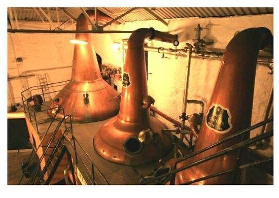 Springbank Distillery: Three stills at Springbank