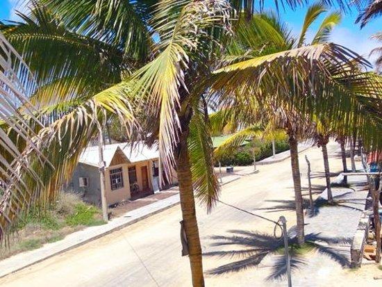 Casa Los Delfines: Views