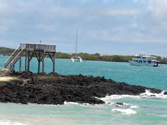 Casa Los Delfines : Views