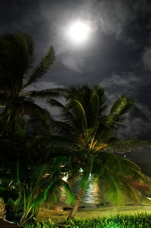 Paradise Villas: Stunning view at night