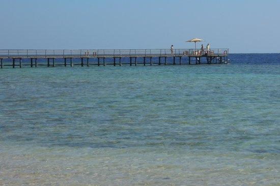 The Palace Port Ghalib: Steg um zu Schnorcheln