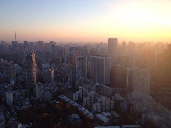 The Ritz-Carlton, Tokyo : room view