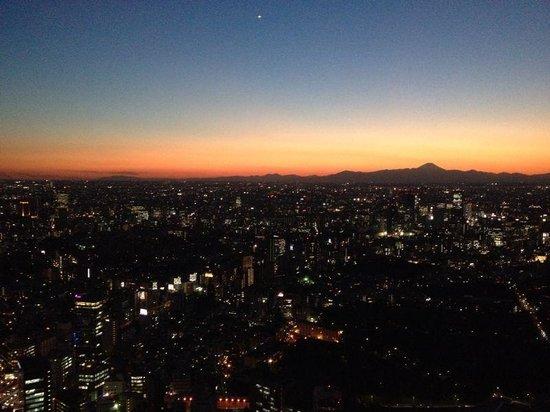 The Ritz-Carlton, Tokyo : Mt Fuji from the club lounge