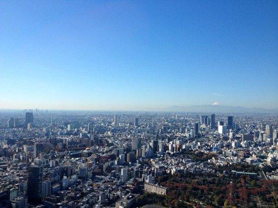 The Ritz-Carlton, Tokyo : Mt Fuji in the morning