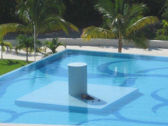 Secrets Huatulco Resort & Spa: Too much Mescal plus 34 C