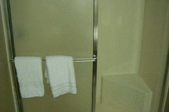 Colorado Belle Hotel & Casino: large shower with seat.