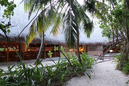 Coco Palm Dhuni Kolhu : vu de l'exterieur de restaurant cowrie