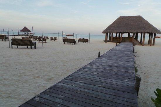 Coco Palm Dhuni Kolhu : le bar de la plage