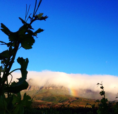 Lourensford Wine Estate: Rainbow's end...