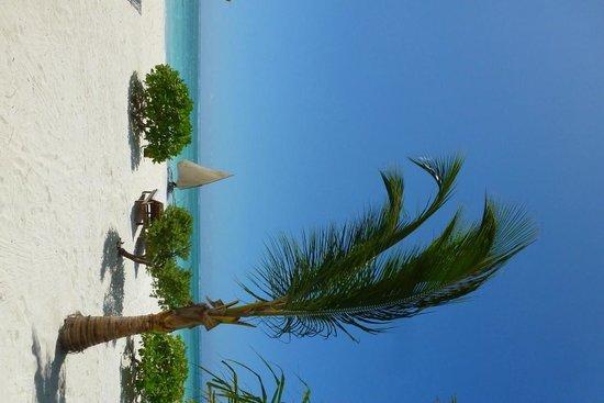 Next Paradise Boutique Resort: beach