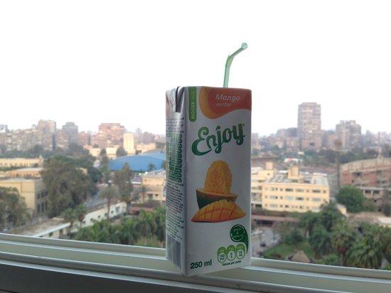 Novotel Cairo El Borg: Вид из окна номера 3019