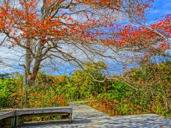 Allens Pond Wildlife Sanctuary : Take a seat and relax!