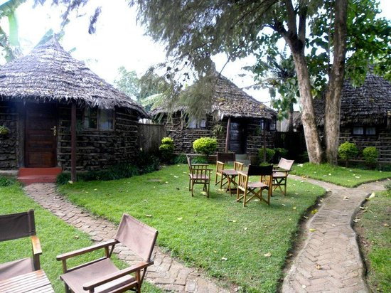 L Oasis Lodge and Restaurant Hotel: Outside grounds