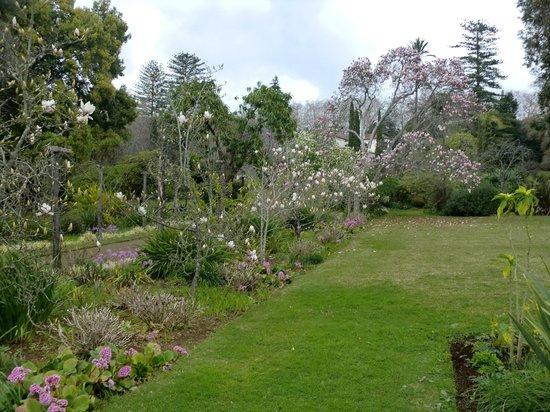 Palheiro Gardens : grounds
