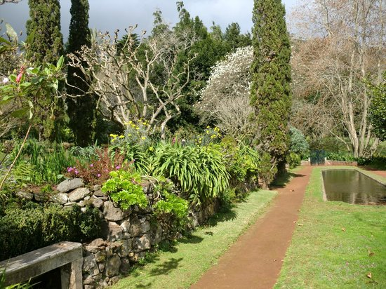 Palheiro Gardens : flowers and blossoms galore in february