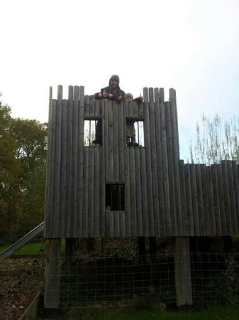 Rare Breeds Centre: Fort Play Area