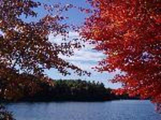Walden Pond State Reservation: Walden Pond in the autumn