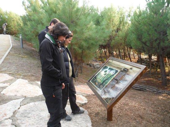 Jardin micologico la trufa fotograf a de jard n for Jardin micologico la trufa