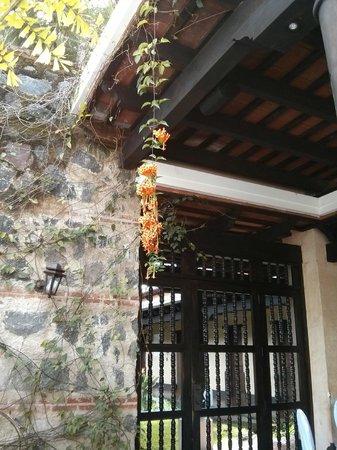 Porta Hotel Antigua : Bellas puertas entre los jardines