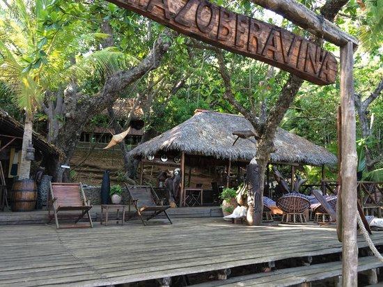 Ecolodge Ankazoberavina : hotel