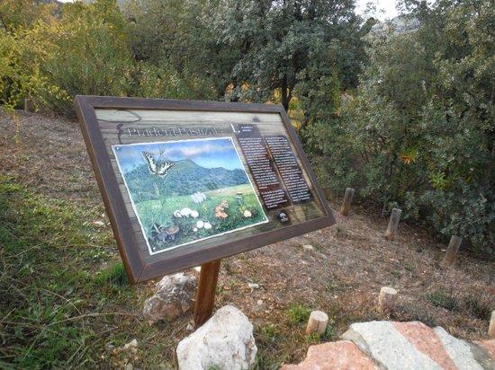 Priego de Cordoba, Spanien: Jardin Micologico La Trufa