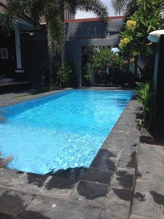 Premium Villas Seminyak: Zwembad/tuin