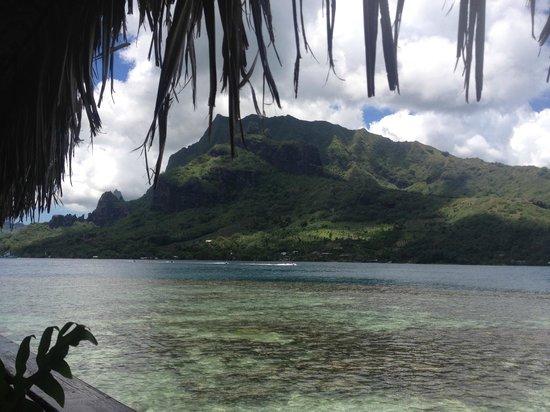 Hotel Kaveka: View