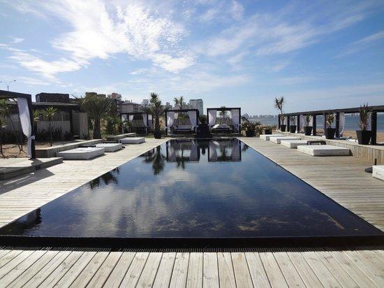 Serena Hotel Punta del Este : Piscina