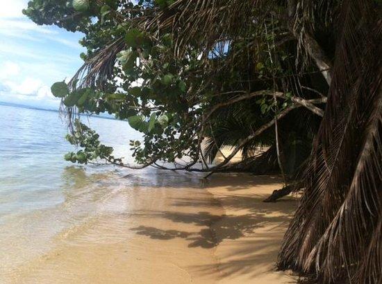 Al Natural Resort : пляж