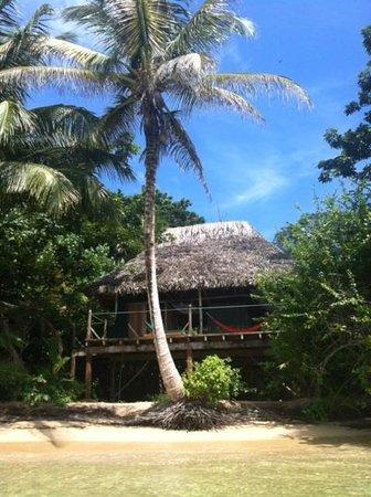 Al Natural Resort : бунгало